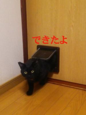 20150413065816_photo