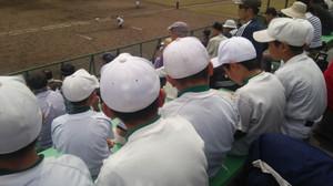 170503114733231_photo