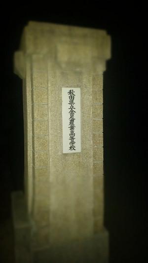 190228225242729_photo