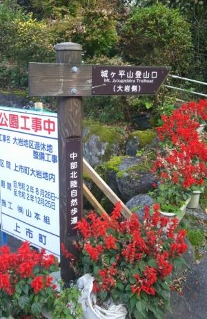 201031074355061_photo