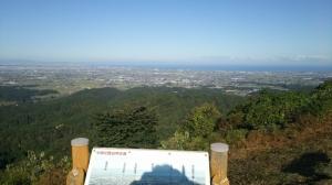 201031083512677_photo